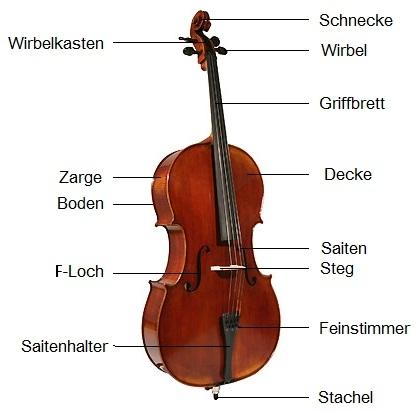 Cello - alles Wissenswerte erfahren | PAGANINO
