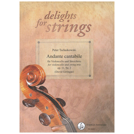 Tschaikowski, P. I.: Andante cantabile Op.11 Nr.2