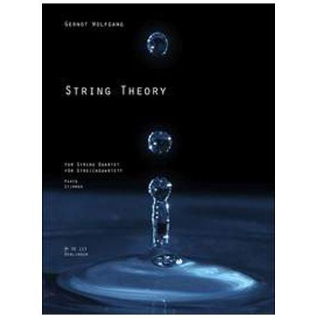 Wolfgang, G.: String Theory