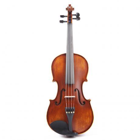 PACATO Classic Viola