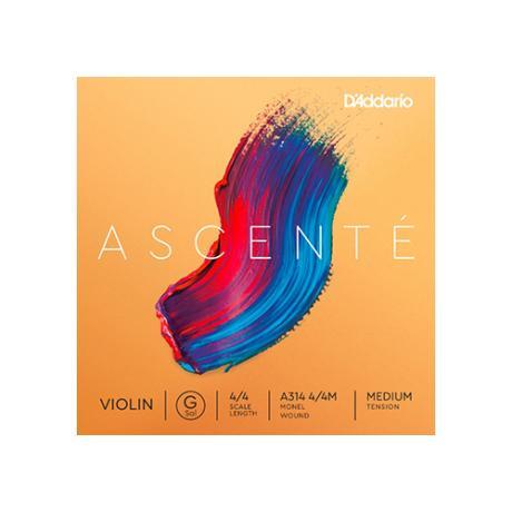 D'ADDARIO Ascenté Violinsaite G