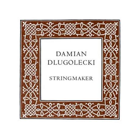 Damian DLUGOLECKI Violinsaite D