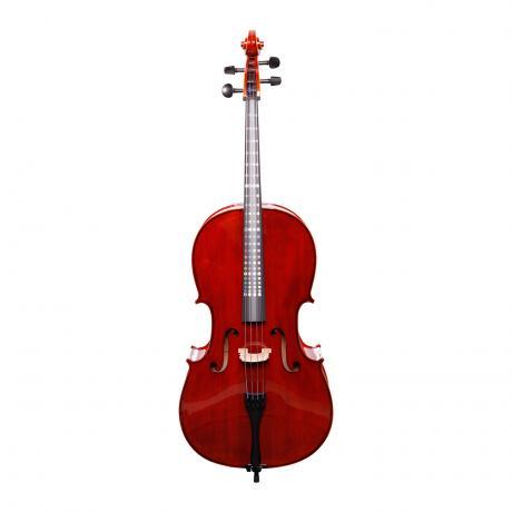 PAGANINO Allegro CLEVER Celloset