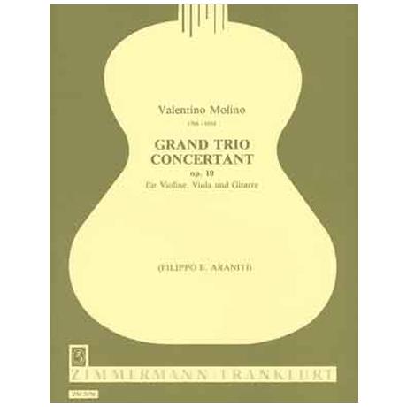 Molino, V.: Grand Trio concertant Op. 10