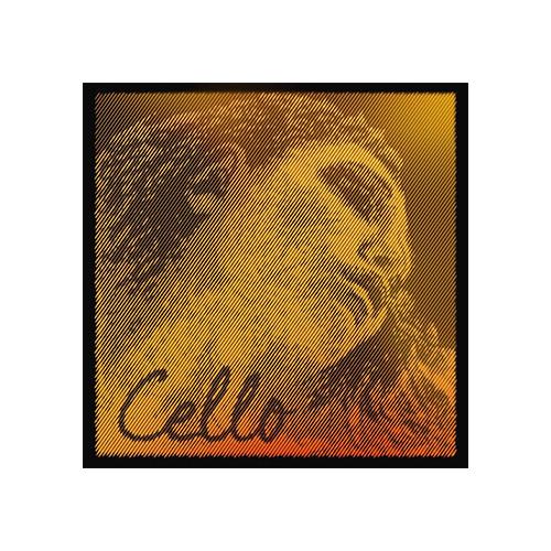 PIRASTRO Evah Pirazzi Gold Cellosaite C