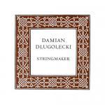 Damian DLUGOLECKI Violinsaite A