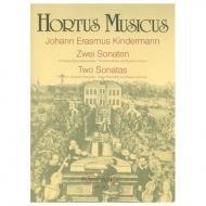Kindermann, J. E.: 2 Violinsonaten