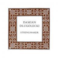 Damian DLUGOLECKI corde violon Sol