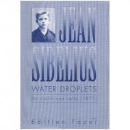 Sibelius, J.: Duo »Wassertropfen« (1875)