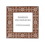 Damian DLUGOLECKI Cellosaite A
