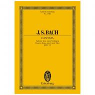 Bach, J. S.: Kantate BWV 32 »Dominica 1 post Epiphanias«