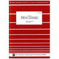 Tschaikowski, P.I.: Medley aus »Schwanensee«