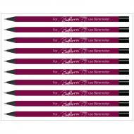 Pencil »Beethoven«