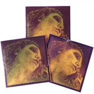EVAH PIRAZZI GOLD violin strings A-D-G by Pirastro