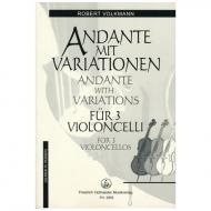 Volkmann, R.: Andante mit Variationen