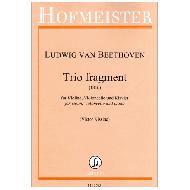 Beethoven, L.v.: Trio fragment