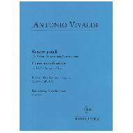 Vivaldi, A.: Violinkonzert g-Moll Op. 8 Nr. 2 (RV 315) – Der Sommer